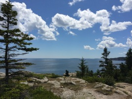 View from Great Head, Acadia